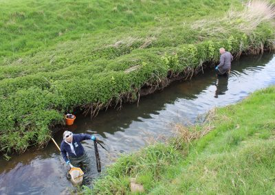 Volunteers collecting rubbish from in the river.