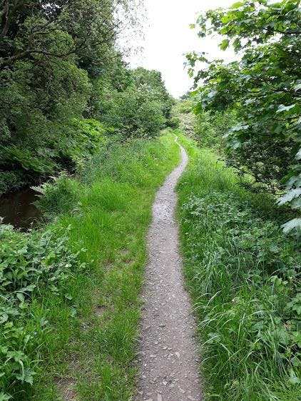 Guided walk: The Canal and the River Almond