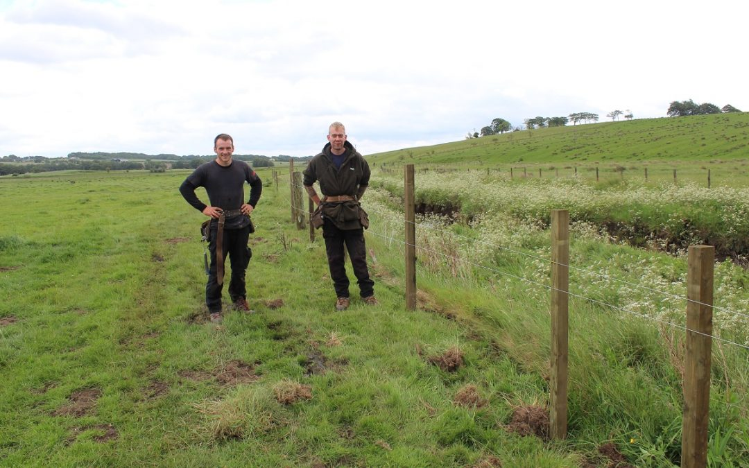 Fencing on the Upper Avon
