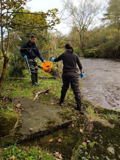 Collecting all things disgusting from the river